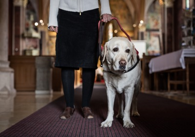 Service Animals at Church: Keeping Everyone Safe